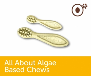About Algae Toothbrush Chews.