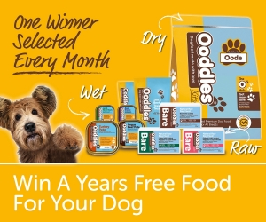 Win A Years Free Food For Your Dog - One Winner Every Month 2021
